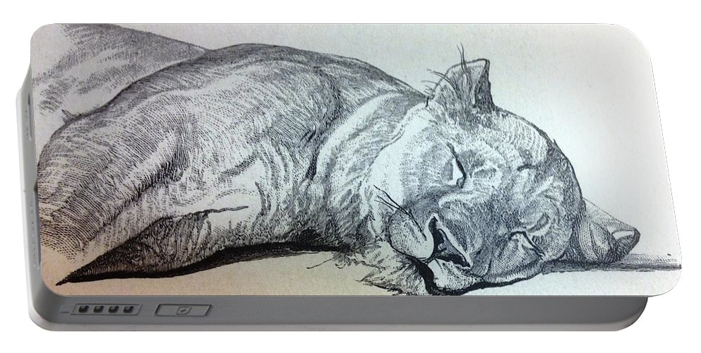 Photo Portable Battery Charger featuring the drawing Slepping Lion by Lord Frederick Lyle Morris - Disabled Veteran
