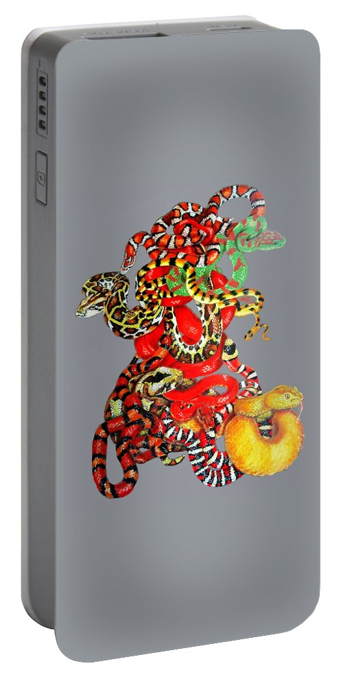 Reptile Portable Battery Charger featuring the drawing Slither by Barbara Keith