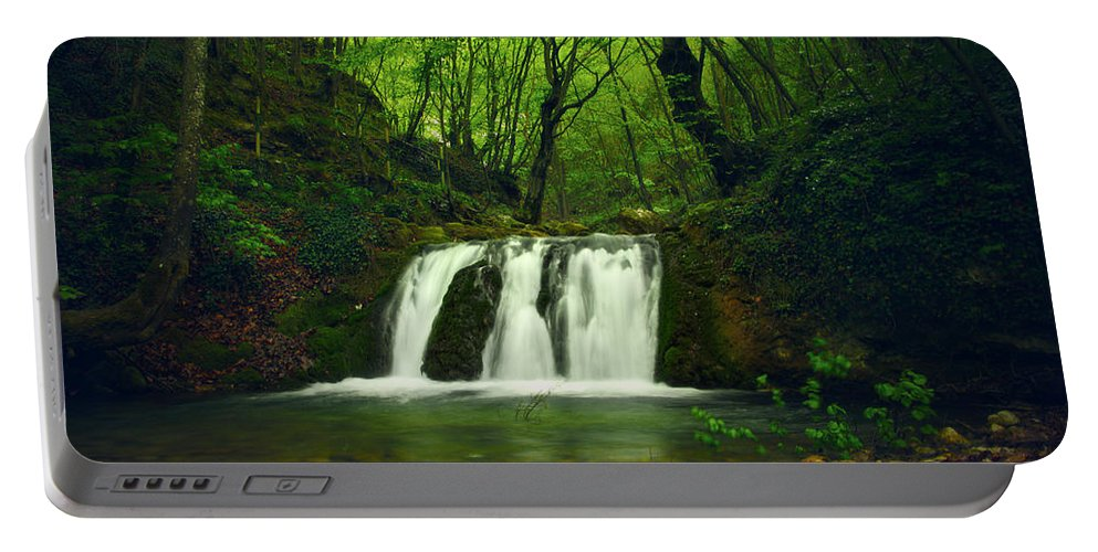 Amazing Portable Battery Charger featuring the photograph Small Waterfall In Forest by Sandra Rugina