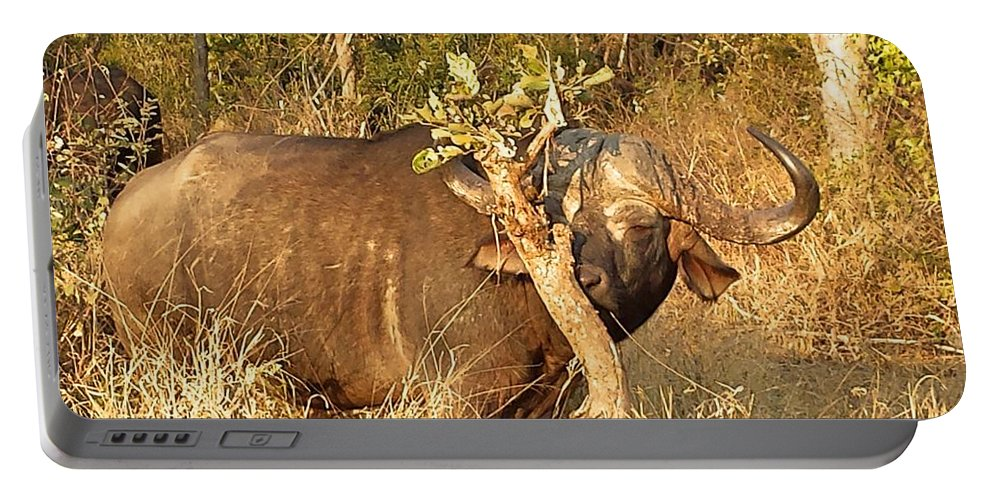 Buffalo Portable Battery Charger featuring the photograph Smells Nice by Lisa Byrne
