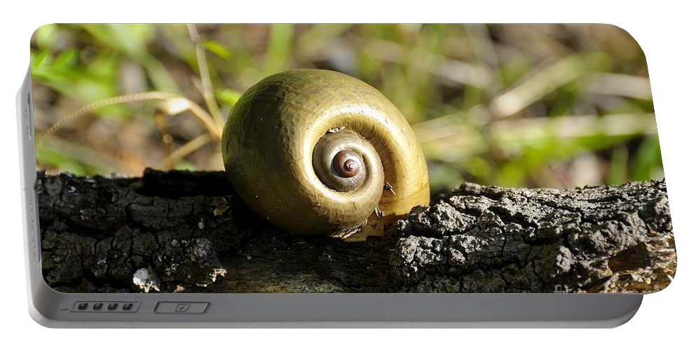 Snail Portable Battery Charger featuring the photograph Snail by David Lee Thompson