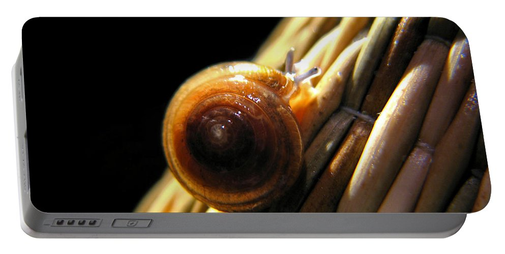 Macro Portable Battery Charger featuring the photograph Snail by Todd Blanchard
