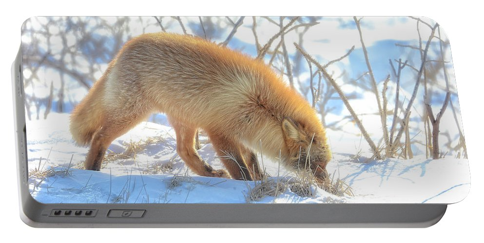 Fox Portable Battery Charger featuring the photograph Sniff Sniff by Leigh Lofgren