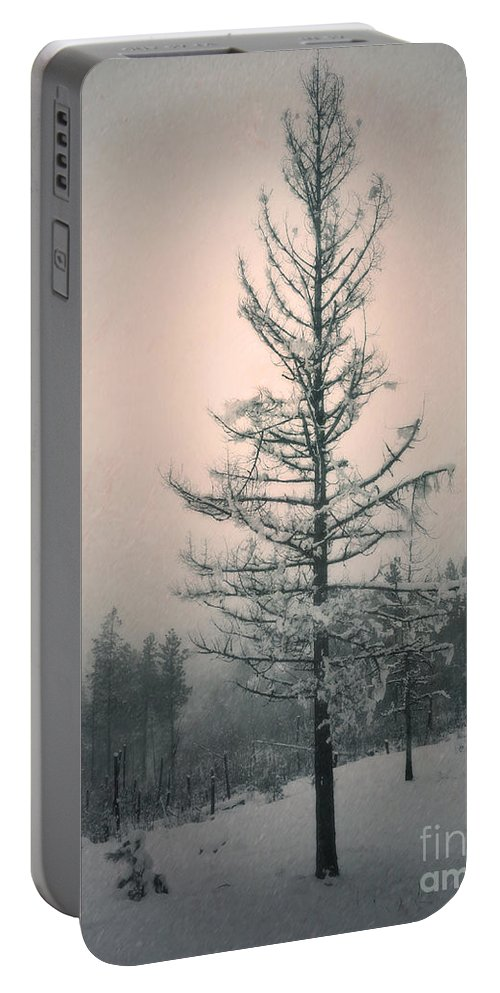 Winter Portable Battery Charger featuring the photograph Snow And The Remnants Of The Fire by Tara Turner