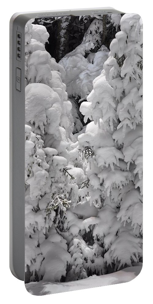 Snow Portable Battery Charger featuring the photograph Snow Coat by Alex Grichenko