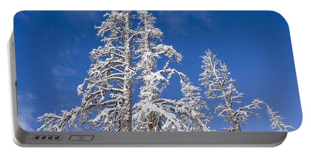 Winter Portable Battery Charger featuring the photograph Snow Covered by Kelley King