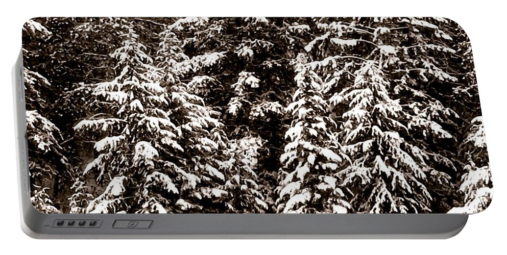 Snow-laden Forest Portable Battery Charger featuring the photograph Snow-laden Forest by Will Borden