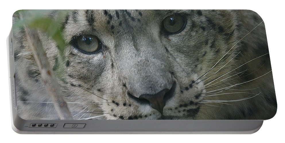 Animals Portable Battery Charger featuring the photograph Snow Leopard 10 by Ernie Echols