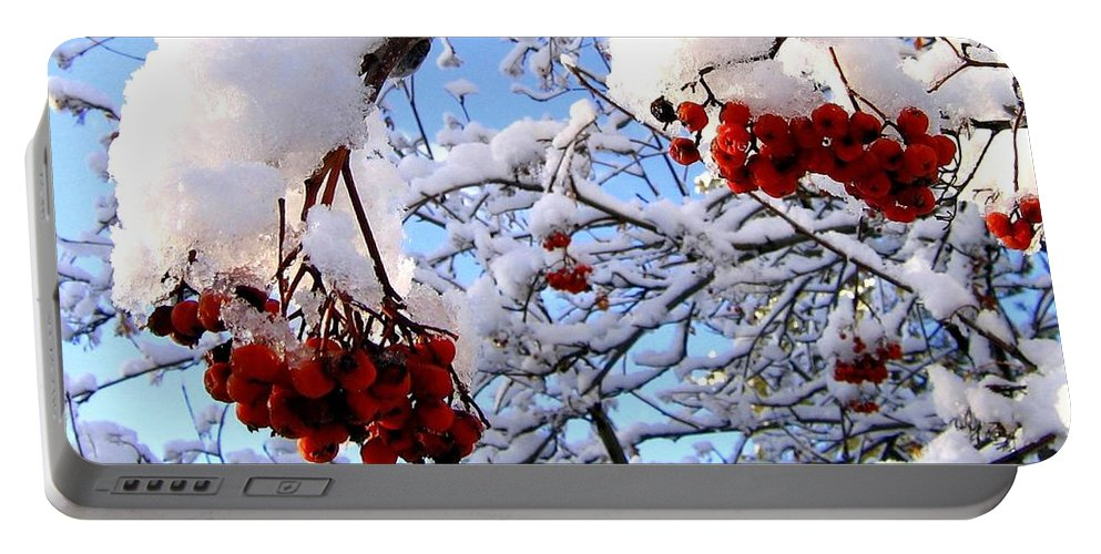Snow Portable Battery Charger featuring the photograph Snow On The Mountain Ash by Will Borden