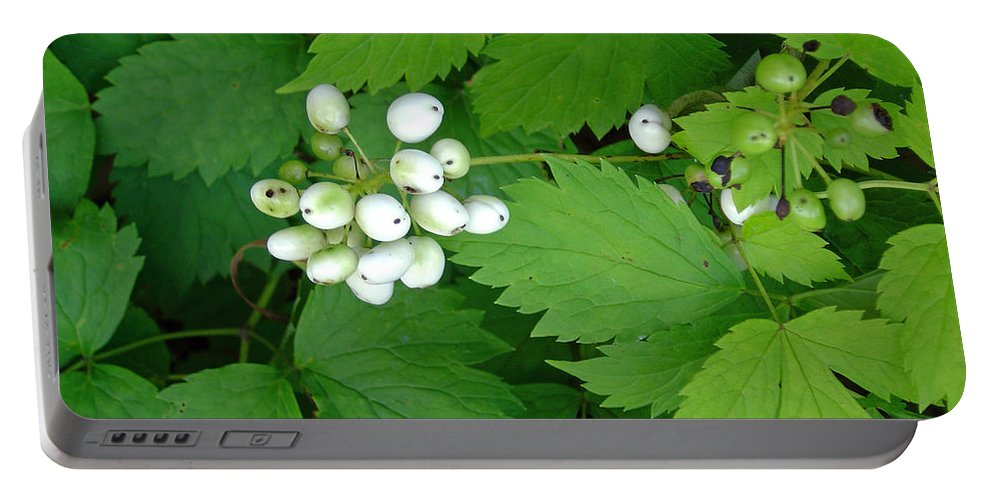 Snow White Bush Of Berries Portable Battery Charger featuring the photograph Snow White Berries by Joanne Smoley