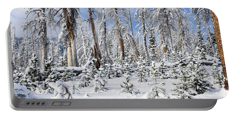 Winter Portable Battery Charger featuring the photograph Snowscape by Kelley King