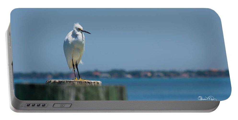 susan Molnar Portable Battery Charger featuring the photograph Snowy Bay by Susan Molnar