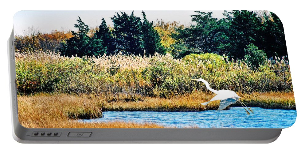 Landscape Portable Battery Charger featuring the photograph Snowy Egret-island Beach State Park N.j. by Steve Karol