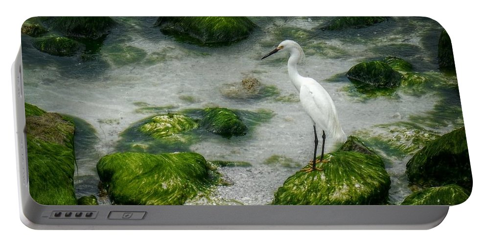 Egret Portable Battery Charger featuring the photograph Snowy Egret On Mossy Rocks by Valerie Reeves