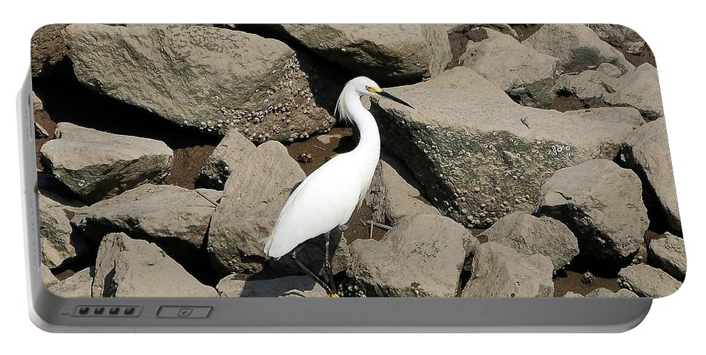 Snowy Egret Portable Battery Charger featuring the photograph Snowy Egret On The Rocks by Al Powell Photography USA
