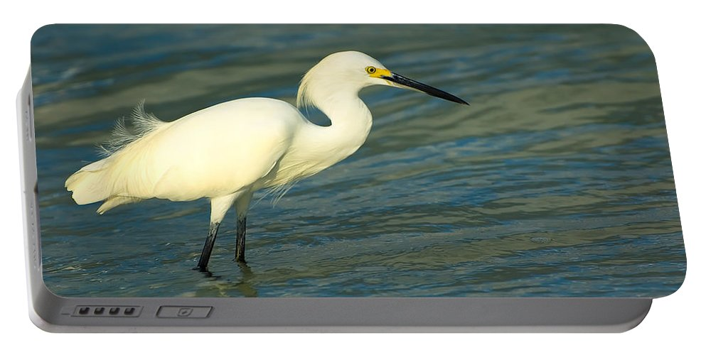 Animal Portable Battery Charger featuring the photograph Snowy Egret by Rich Leighton