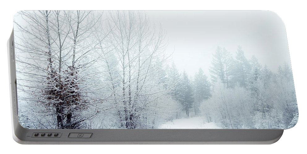 Snow Portable Battery Charger featuring the photograph Snowy Sunday by Tara Turner