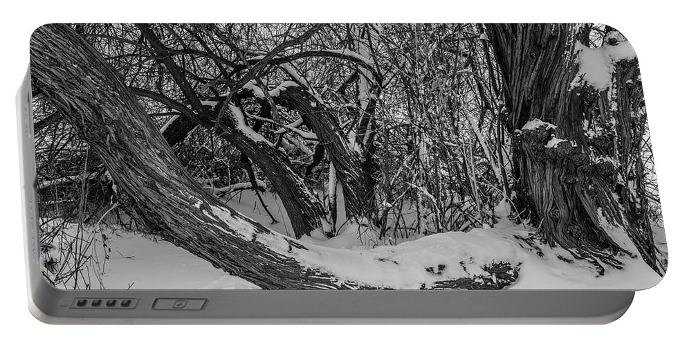 Black And White Portable Battery Charger featuring the photograph Snowy Tree Bench In Black And White by Michael Putthoff