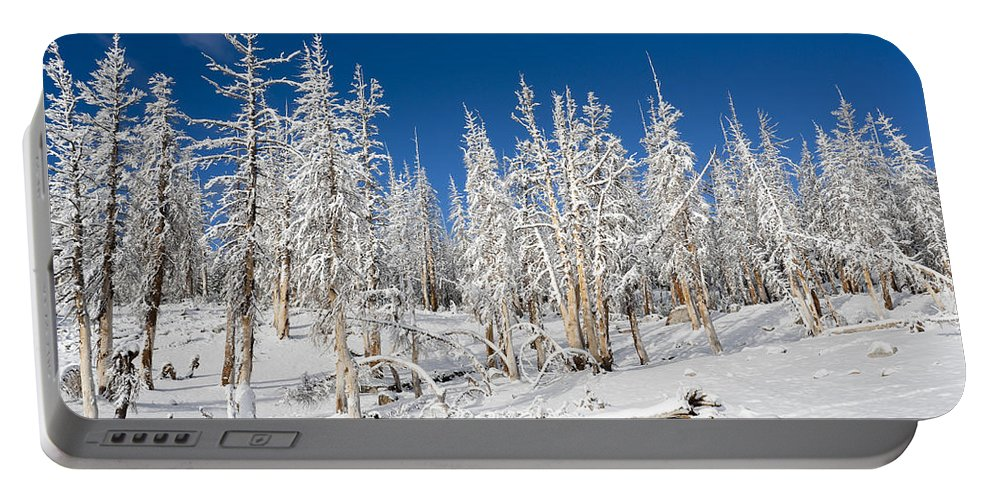 Winter Portable Battery Charger featuring the photograph Snowy Trees by Kelley King