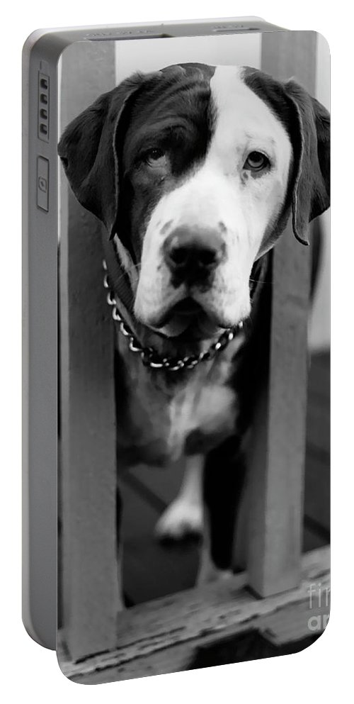 Black And White Portable Battery Charger featuring the photograph So Sad by Peter Piatt
