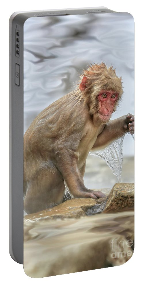 Snow Monkeys Portable Battery Charger featuring the photograph So Wet by Leigh Lofgren