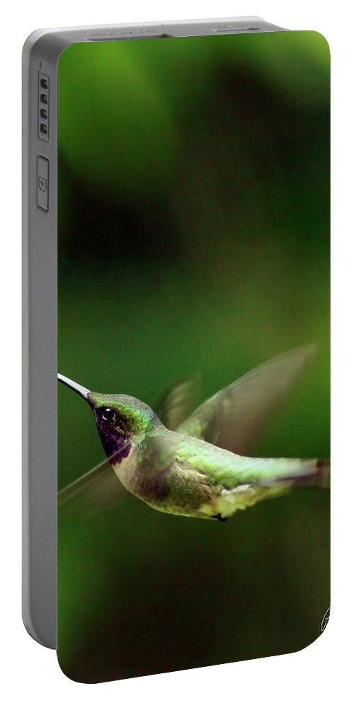 Canvas Portable Battery Charger featuring the photograph Soaring by Phill Doherty
