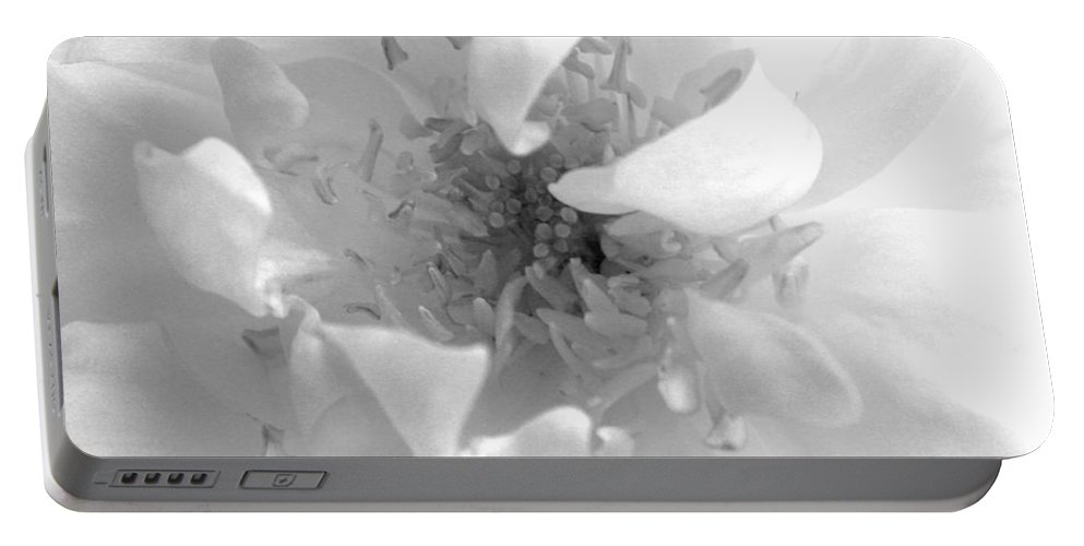 Black And White Portable Battery Charger featuring the photograph Soft White by Marna Edwards Flavell