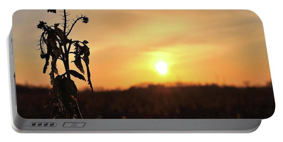 Sonnenuntergang Blume Flowwer Sky Himmel Portable Battery Charger featuring the photograph Sonnenuntergang by Scimitarable
