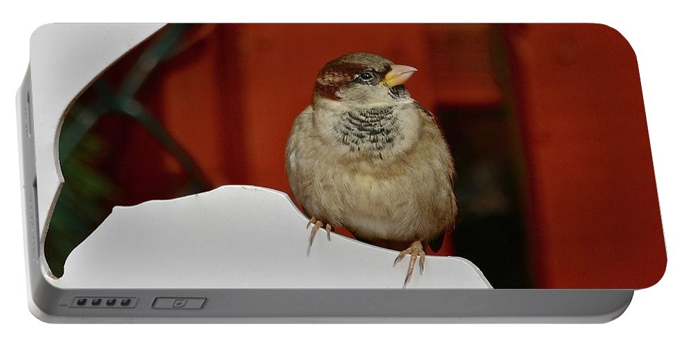 Sparrow Portable Battery Charger featuring the photograph Soul Of A Giant by Susan Ballard