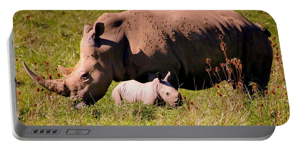 Southern White Rhinoceros Portable Battery Charger featuring the photograph Southern White Rhino With A Little One by Laurel Talabere