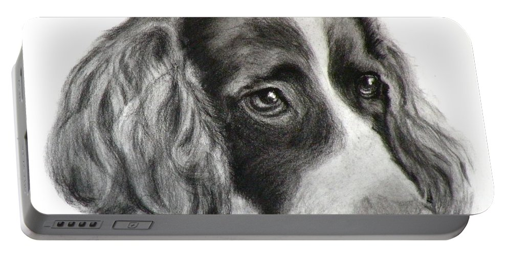 Dogs Portable Battery Charger featuring the painting Spaniel Drawing by Susan A Becker