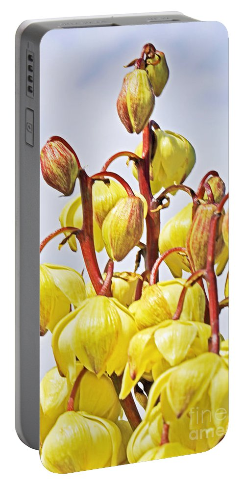 Yucca Schidigera Flower Portable Battery Charger featuring the photograph Spanish Dagger by Edita De Lima