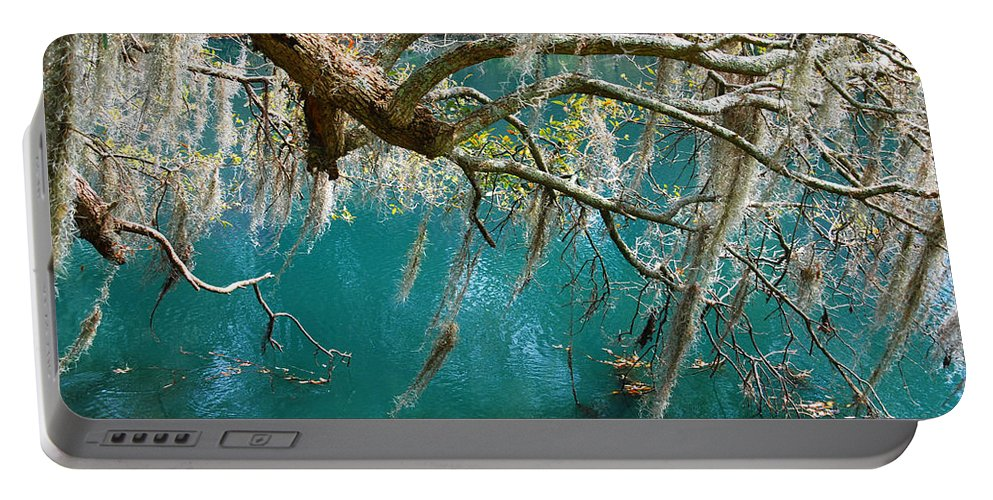 Emerald Green Water Portable Battery Charger featuring the photograph Spanish Moss And Emerald Green Water by Susanne Van Hulst
