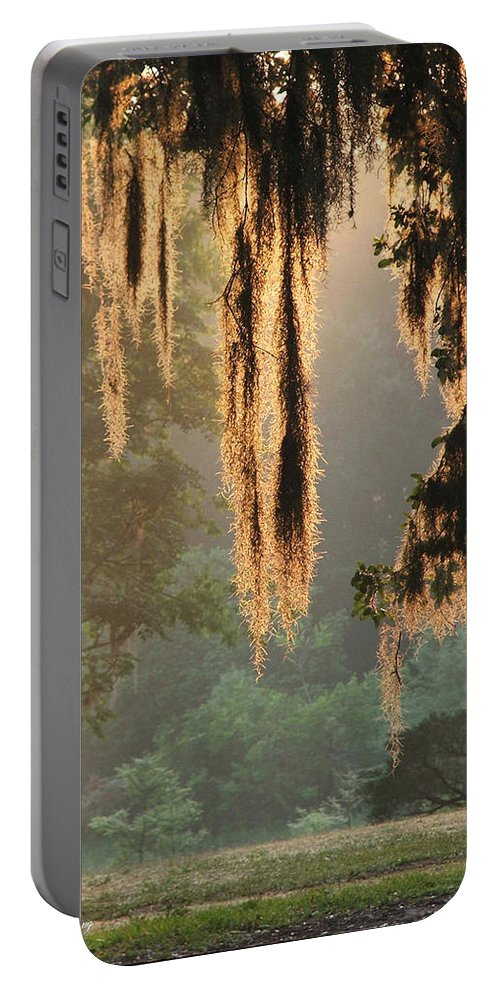 Spanish Moss Portable Battery Charger featuring the photograph Spanish Moss In The Morning by Robert Meanor