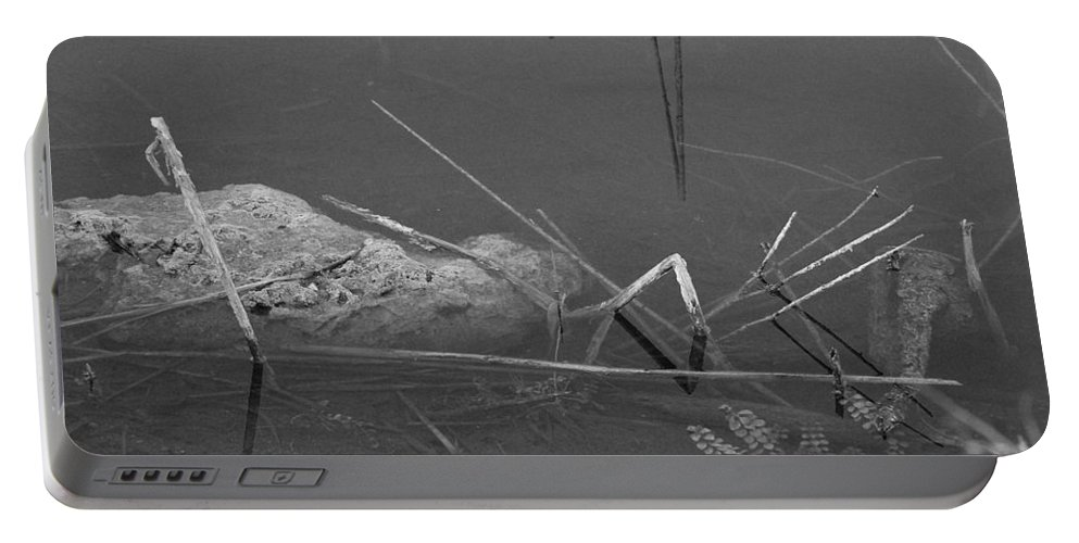 Black And White Portable Battery Charger featuring the photograph Spider In Water by Rob Hans