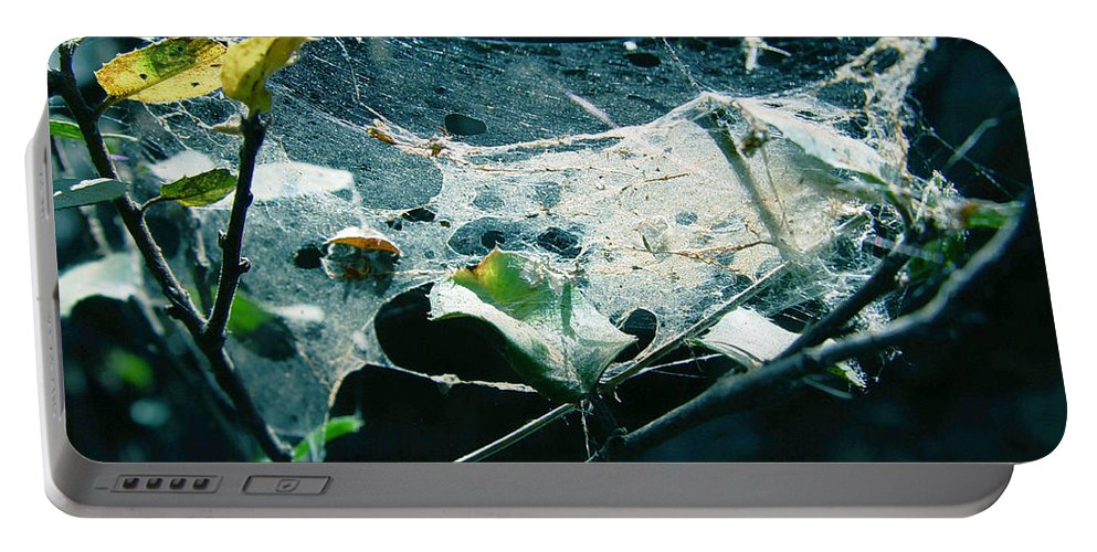 Spider Portable Battery Charger featuring the photograph Spider Web by Peter Piatt