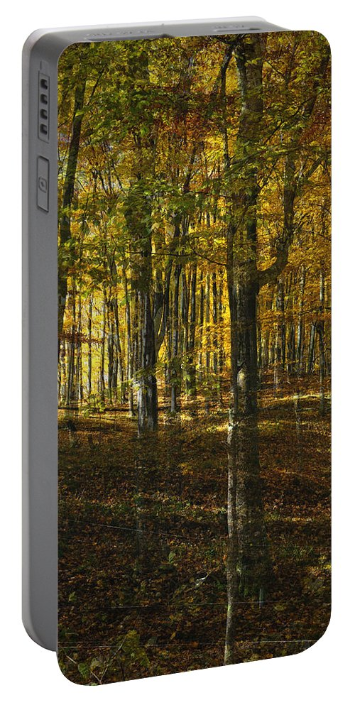 Woods Portable Battery Charger featuring the photograph Spirits In The Woods by Tim Nyberg