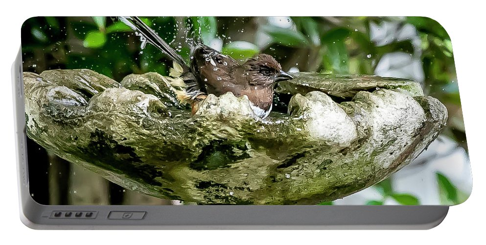 Bird Portable Battery Charger featuring the digital art Splashing Around In The Pool. by Ed Stines