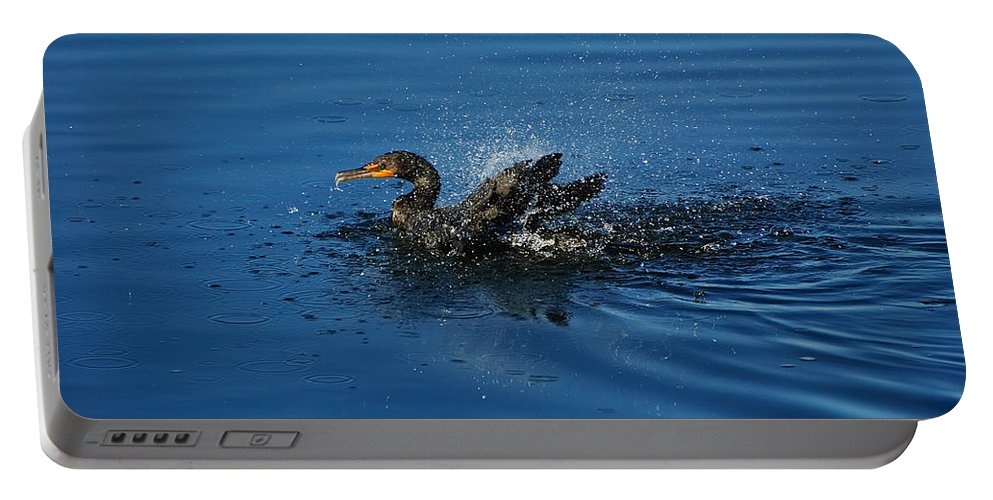 Animal Portable Battery Charger featuring the photograph Splashing Cormorant by Rich Leighton