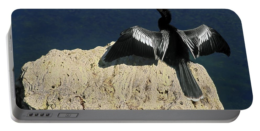 Anhinga Portable Battery Charger featuring the photograph Spreading My Wings by Sally Weigand