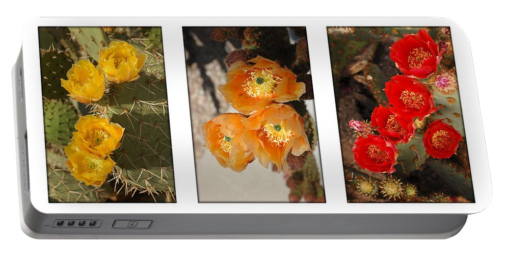 Arizona Portable Battery Charger featuring the photograph Spring - Desert Style by Jill Reger