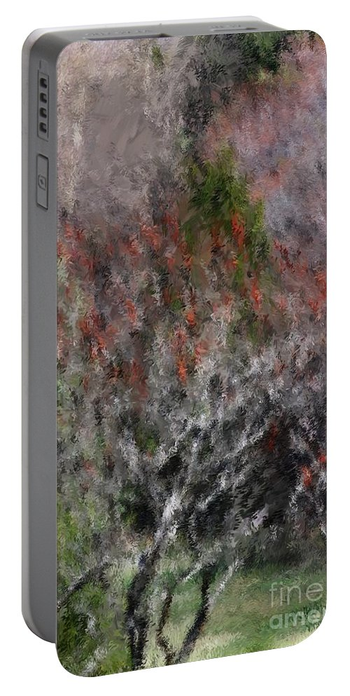 Spring Portable Battery Charger featuring the photograph Spring at the Hacienda by David Lane