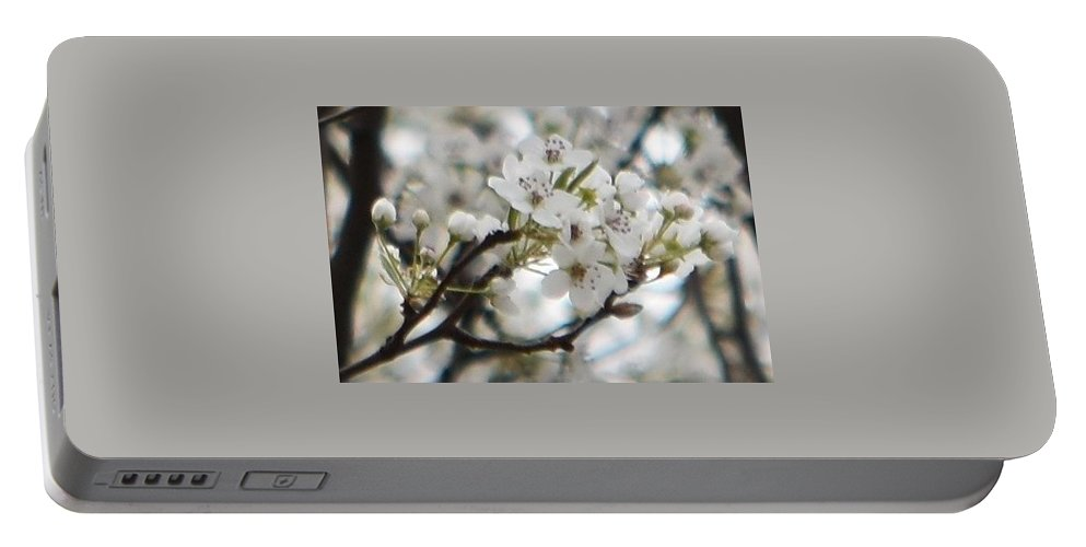 Spring Portable Battery Charger featuring the photograph Spring Beauty by Linda Benoit