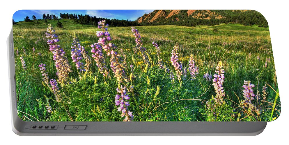 Mountains Portable Battery Charger featuring the photograph Spring Beauty by Scott Mahon