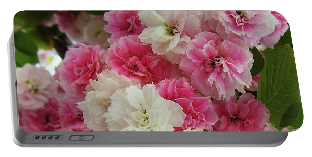 Pink Flowers Portable Battery Charger featuring the photograph Spring Blossom 3 by Xueling Zou
