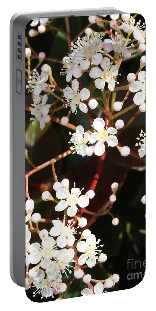 Spring Portable Battery Charger featuring the photograph Spring Blossoms Macro by Carol Groenen