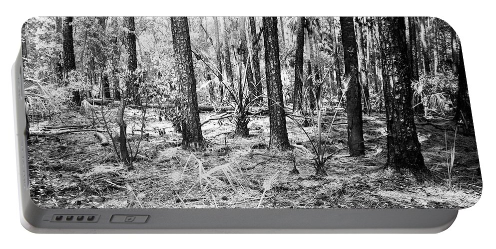 Canvas Portable Battery Charger featuring the photograph Spring Burn by Phill Doherty
