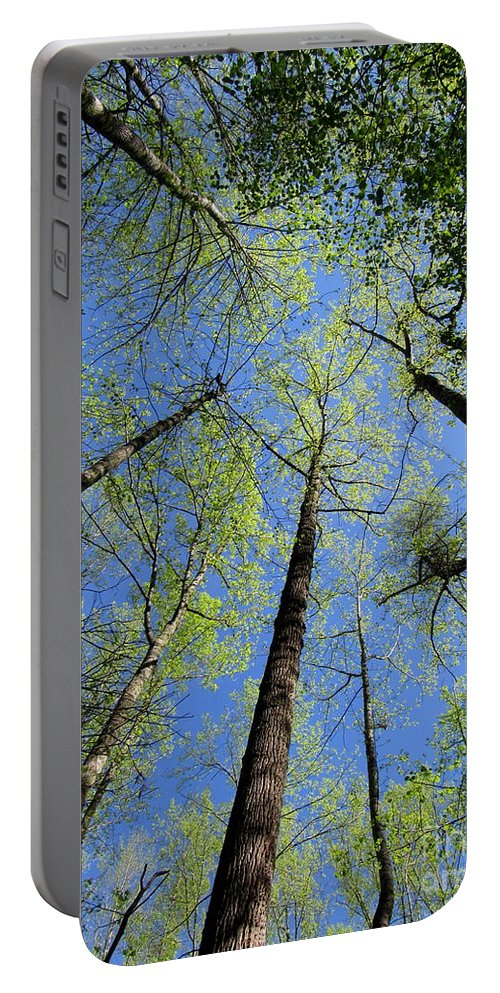 Spring Canopy Skylight Blue Sky Tree Tops Seasonal Woodland Canopy Forest Landscapes Natural Landscapes North American Landscapes Appalachian Landscapes Deciduous Woodland Hardwood Forest Appalachian Forest Portable Battery Charger featuring the photograph Spring Canopy Skylight by Joshua Bales