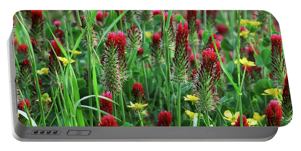 Clover Portable Battery Charger featuring the photograph Spring Clover by Marvin Averett