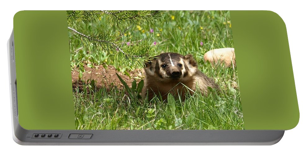 Badger Portable Battery Charger featuring the photograph Spring Fever by DeeLon Merritt